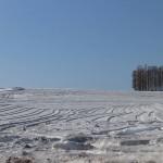 融雪剤の撒かれた畑