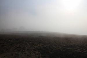 今朝の風景、霧。