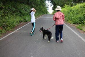 ベリーと散歩