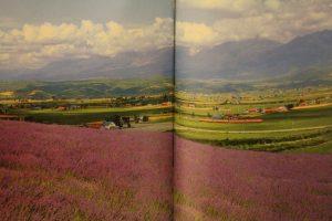 本の中の景色