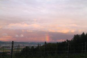 夕焼け空と虹