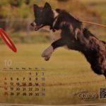 クロエのカレンダー10月