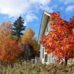 我が家と紅葉